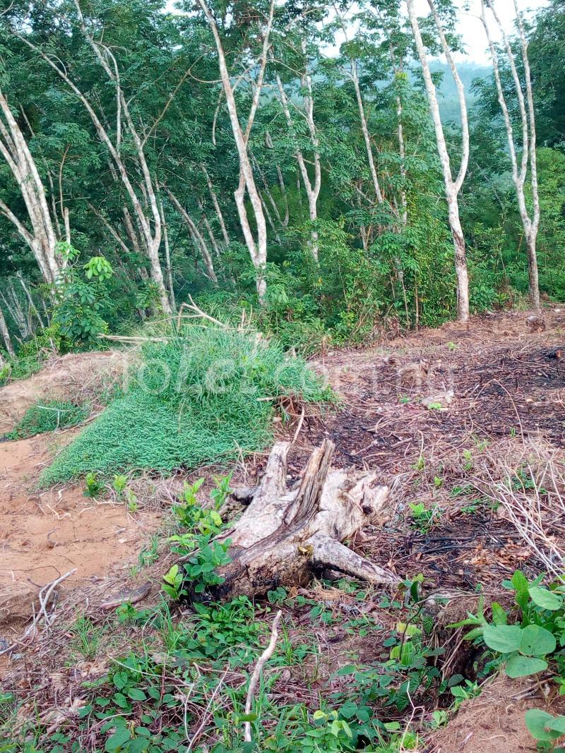 Land for sale Akim Akim Odukpani Cross River - 0