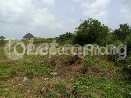 Residential Land Land for sale Alaoma Residential Nekede Layout  Owerri Imo - 1