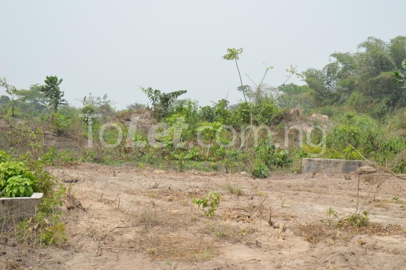 Commercial Land for sale Kajola Village Onigbedu/dangote Road Ibese Abese Ewekoro Ogun - 2