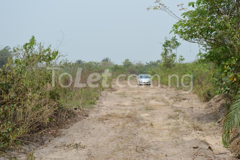 Commercial Land for sale Kajola Village Onigbedu/dangote Road Ibese Abese Ewekoro Ogun - 1