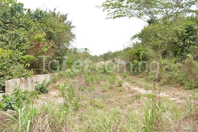 Commercial Land for sale Kajola Village Onigbedu/dangote Road Ibese Abese Ewekoro Ogun - 4
