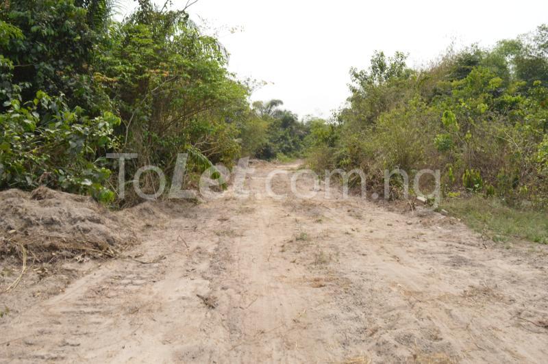 Commercial Land for sale Kajola Village Onigbedu/dangote Road Ibese Abese Ewekoro Ogun - 3