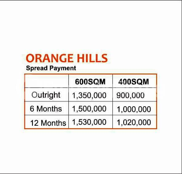 Residential Land Land for sale Orange Hills Ilara Epe Lagos Epe Road Epe Lagos - 0