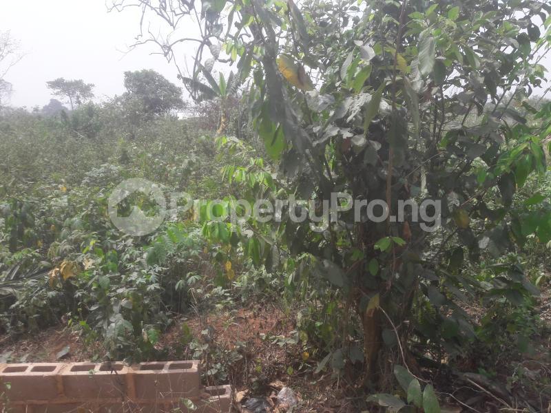 Land for sale Regent City Land Owerri Owerri Imo - 0