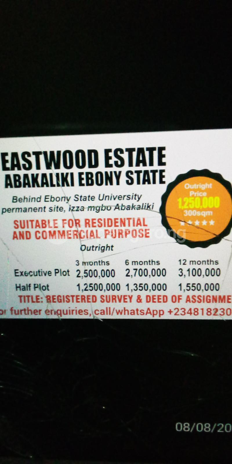 Residential Land Land for sale Behind Ebonyi State University Permanent Site, Izza Mgbo  Ezza Ebonyi - 0