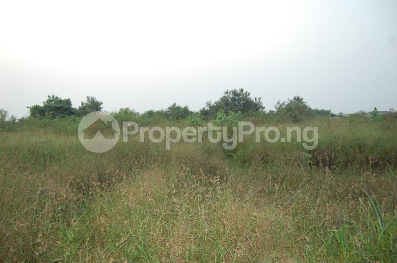 Serviced Residential Land for sale Close To Funai Abakaliki Ebonyi - 0