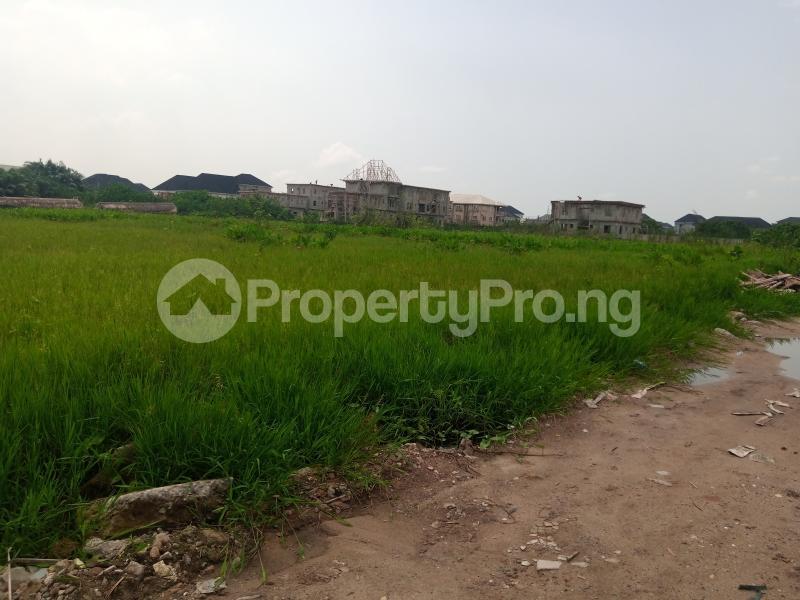 Mixed   Use Land Land for sale 20 plots of land for Sale in Agoh palace way Okota Lagos State Ago palace Okota Lagos - 3