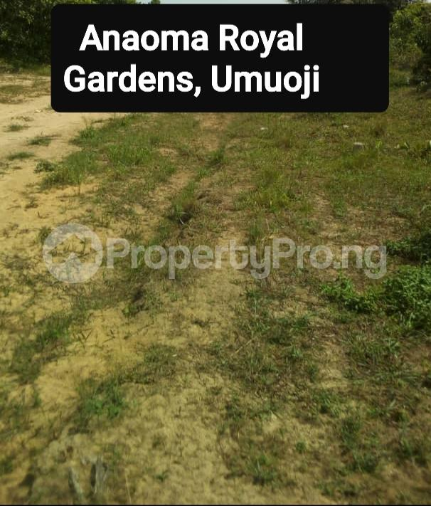 Mixed   Use Land Land for sale Ana Oma Royal Gardens Akanabu Village Umuoji Idemili North Anambra - 0