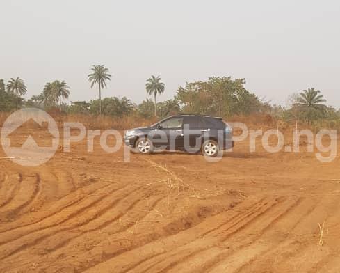 Serviced Residential Land Land for sale Diamond Estate Amuzam Awkunanaw behind Centenry City Enugu State Uzo-Uwani Enugu - 0