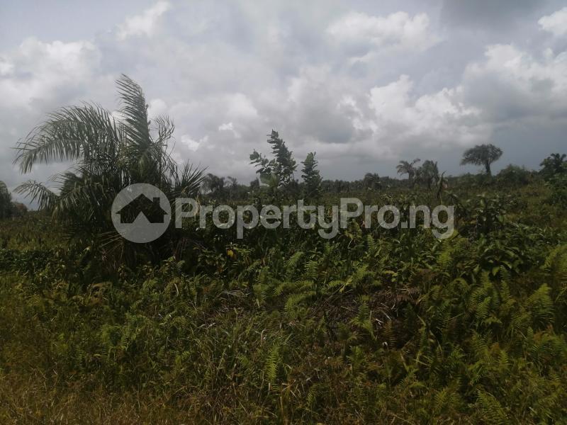 Residential Land Land for sale Lagoon Park Estate Abijo by Chalcedony school via Abijo GRA  Abijo Ajah Lagos - 1