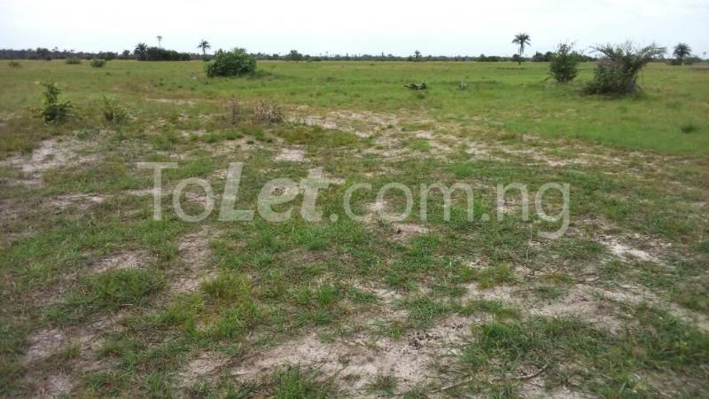Land for sale Before La Campaign Tropicana Beach Resort Ibeju-Lekki Lagos - 1