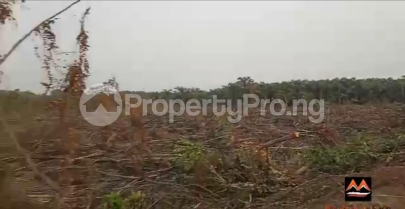 Mixed   Use Land Land for sale Medorf Luxury Estate Itokin Road  Epe Road Epe Lagos - 7