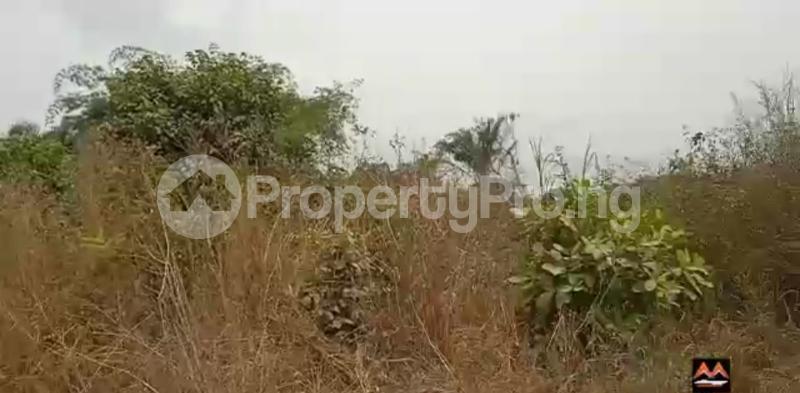 Mixed   Use Land Land for sale Medorf Luxury Estate Itokin Road  Epe Road Epe Lagos - 13