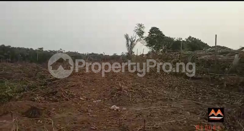Mixed   Use Land Land for sale Medorf Luxury Estate Itokin Road  Epe Road Epe Lagos - 4