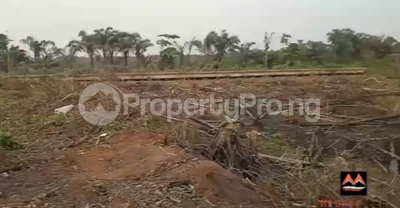 Mixed   Use Land Land for sale Medorf Luxury Estate Itokin Road  Epe Road Epe Lagos - 10