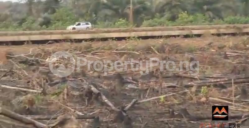 Mixed   Use Land Land for sale Medorf Luxury Estate Itokin Road  Epe Road Epe Lagos - 5