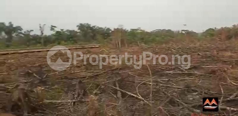 Mixed   Use Land Land for sale Medorf Luxury Estate Itokin Road  Epe Road Epe Lagos - 9