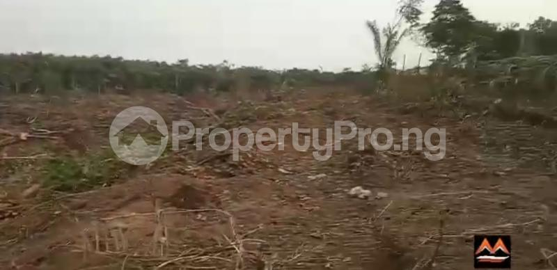 Mixed   Use Land Land for sale Medorf Luxury Estate Itokin Road  Epe Road Epe Lagos - 12