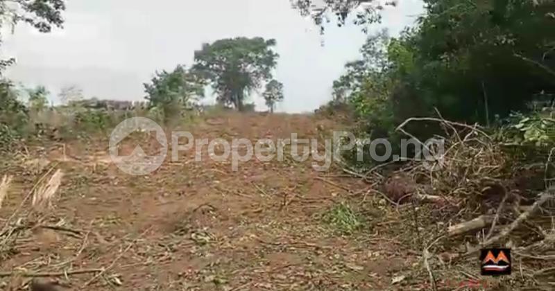 Mixed   Use Land Land for sale Medorf Luxury Estate Itokin Road  Epe Road Epe Lagos - 0