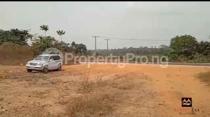 Mixed   Use Land Land for sale Medorf Luxury Estate Itokin Road  Epe Road Epe Lagos - 11