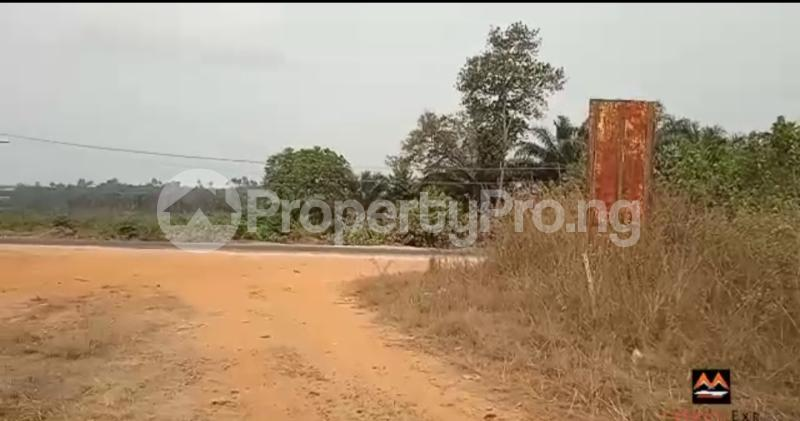Mixed   Use Land Land for sale Medorf Luxury Estate Itokin Road  Epe Road Epe Lagos - 1