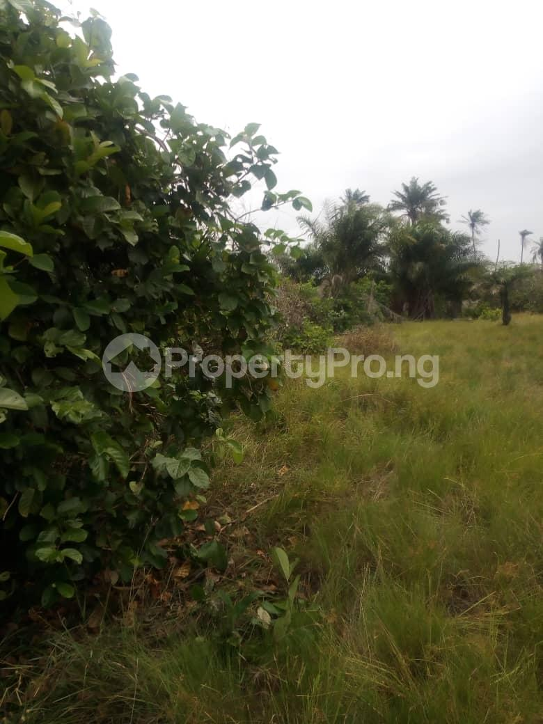 Serviced Residential Land Land for sale Diamond Estate Ngor Okpala off Airport road Ngor-Okpala Imo - 0