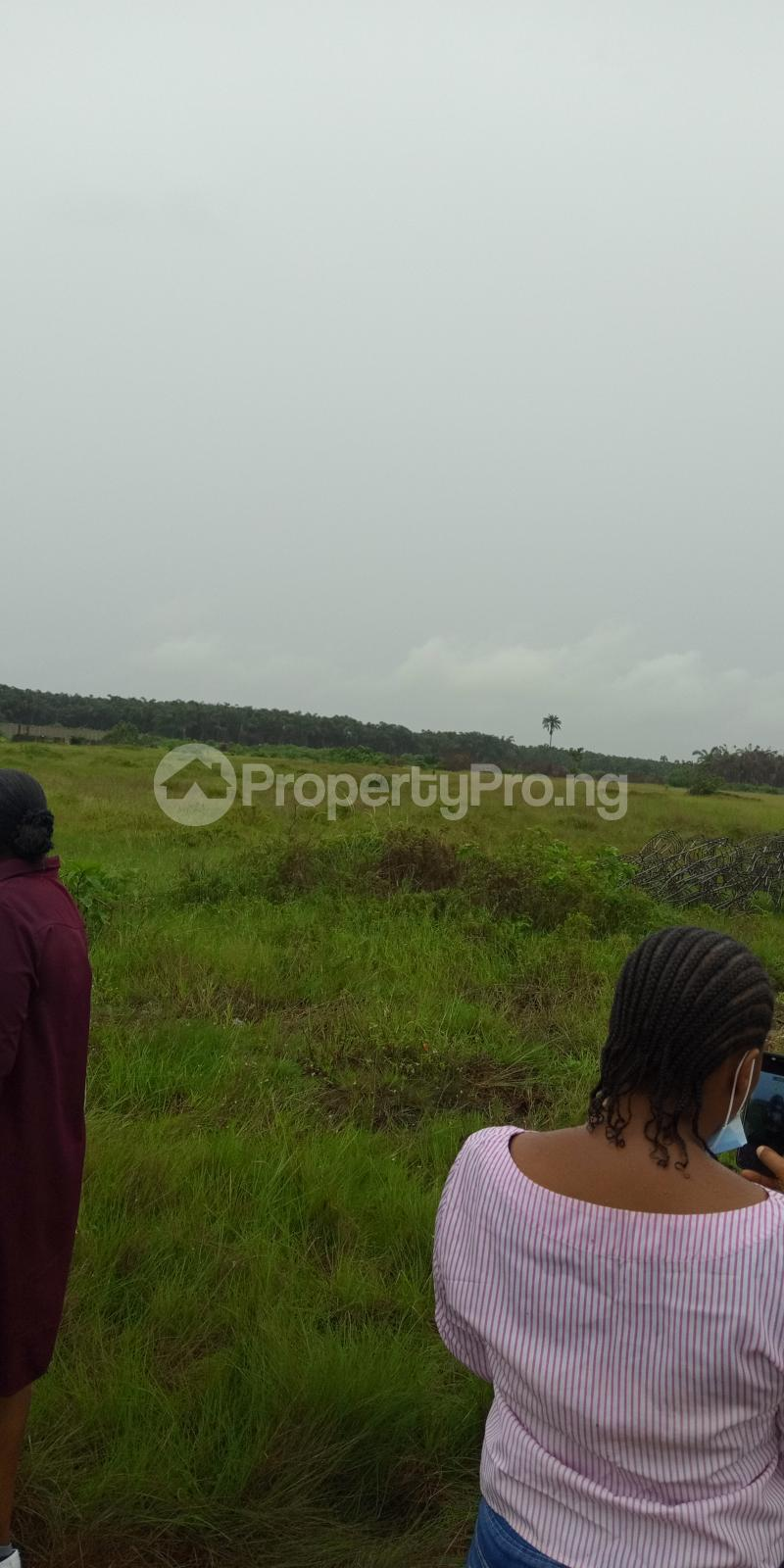 Serviced Residential Land for sale Woodberry Terrace Onosa Town Ibeju Lekki Lagos Iberekodo Ibeju-Lekki Lagos - 0