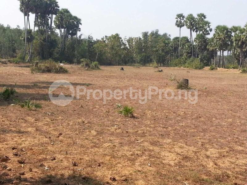 Mixed   Use Land Land for sale 10mins Drive to Sam Mbakwe airport. Owerri Imo - 0