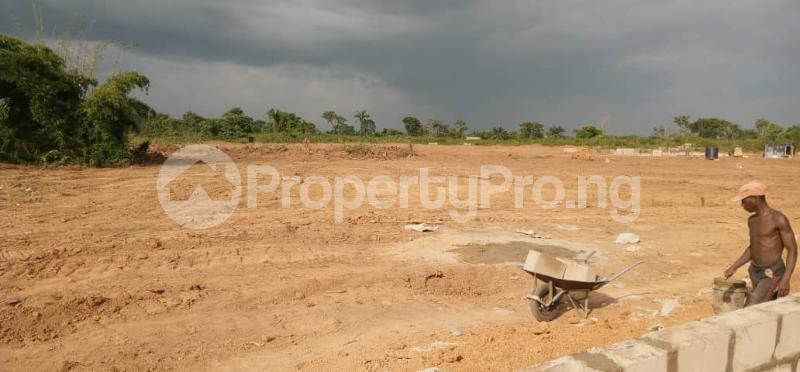 Serviced Residential Land Land for sale Citadel Estate New Airport road Port Harcourt Rivers - 1