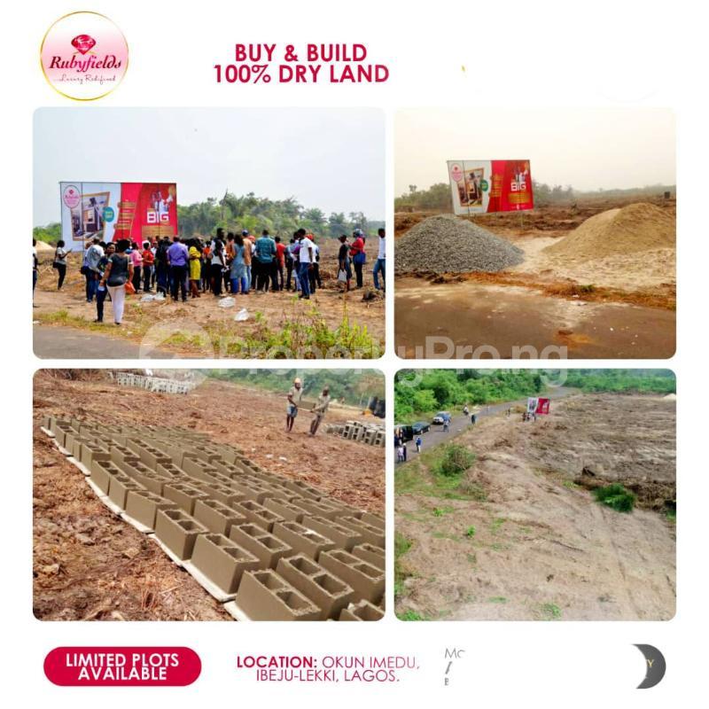 Mixed   Use Land Land for sale Located At Okun Imedu Ibeju Lekki Lagos Nigeria Ise town Ibeju-Lekki Lagos - 2