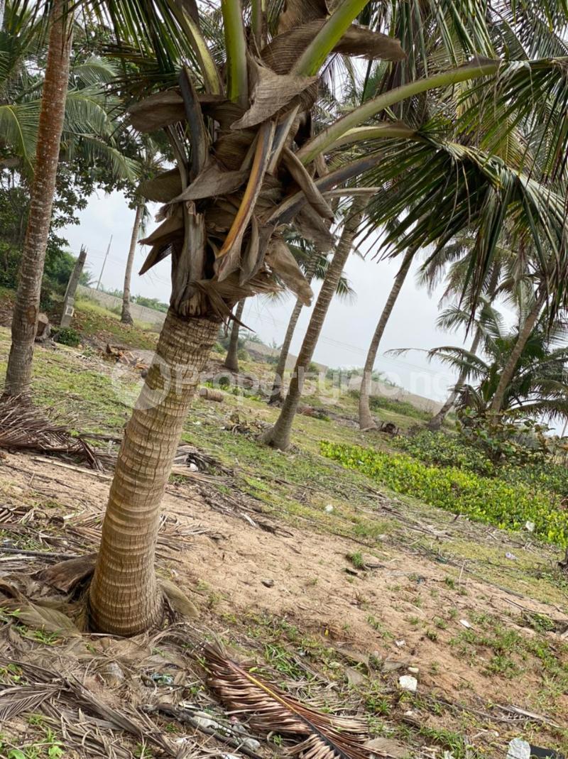 Residential Land for sale Gracias Atlantic Ocean View Sangotedo Ajah Lagos - 1