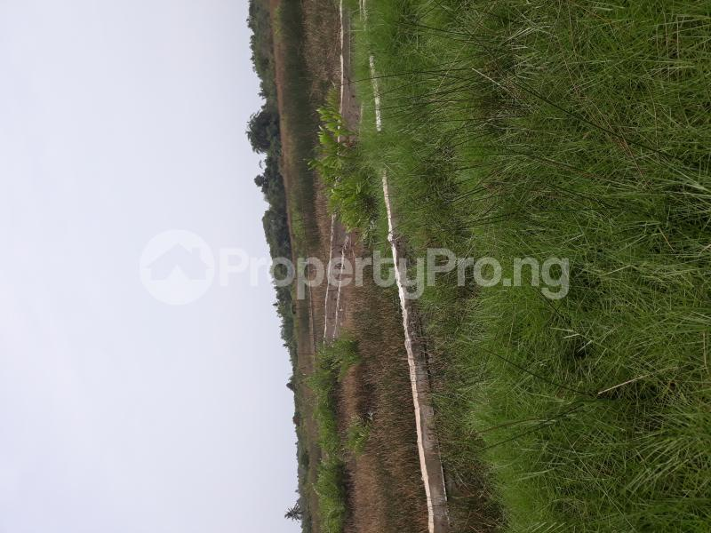 Residential Land Land for sale Located At Satellite Town FESTAC Amowu Odofin Lagos Mainland Lagos Nigeria  Satellite Town Amuwo Odofin Lagos - 15
