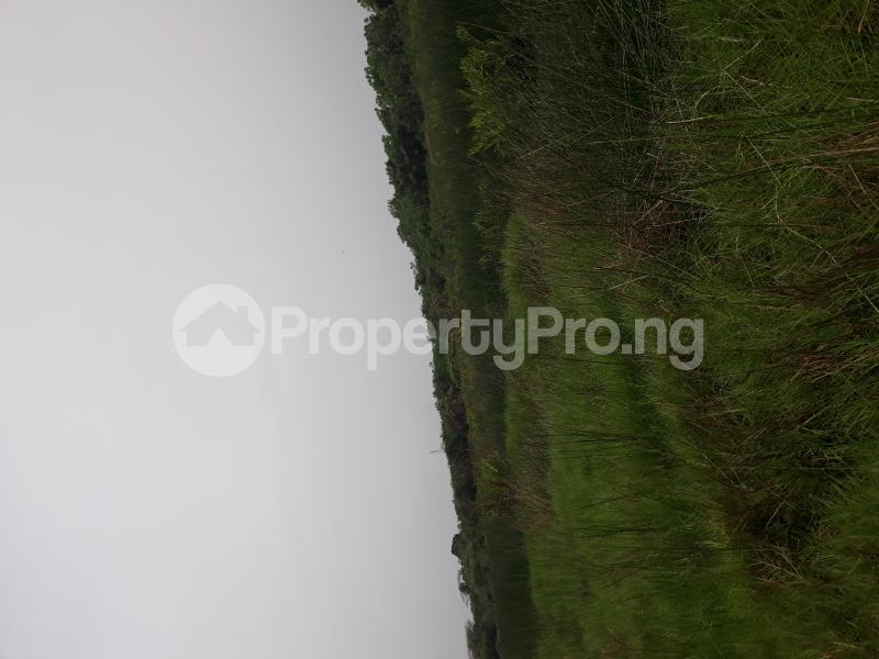 Residential Land Land for sale Located At Satellite Town FESTAC Amowu Odofin Lagos Mainland Lagos Nigeria  Satellite Town Amuwo Odofin Lagos - 1