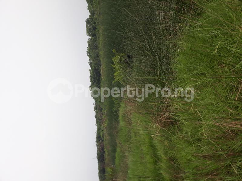 Residential Land Land for sale Located At Satellite Town FESTAC Amowu Odofin Lagos Mainland Lagos Nigeria  Satellite Town Amuwo Odofin Lagos - 20