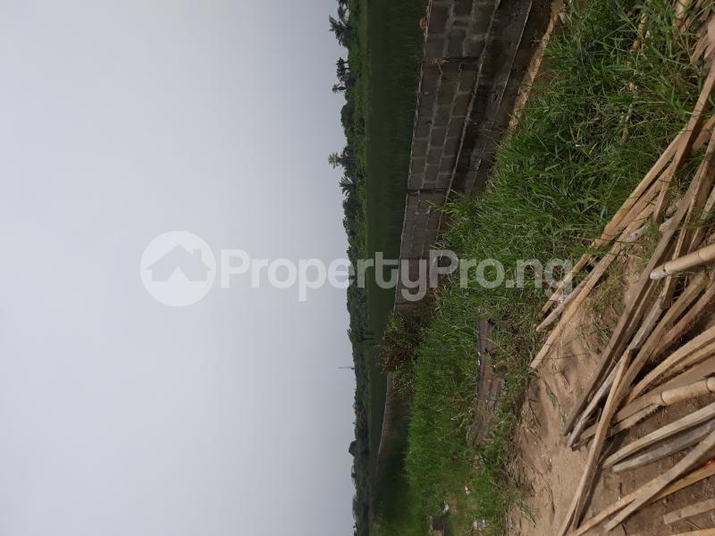 Residential Land Land for sale Located At Satellite Town FESTAC Amowu Odofin Lagos Mainland Lagos Nigeria  Satellite Town Amuwo Odofin Lagos - 36