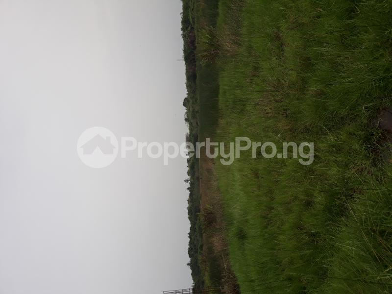 Residential Land Land for sale Located At Satellite Town FESTAC Amowu Odofin Lagos Mainland Lagos Nigeria  Satellite Town Amuwo Odofin Lagos - 24