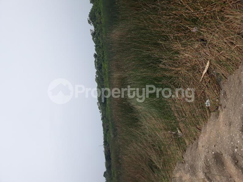 Residential Land Land for sale Located At Satellite Town FESTAC Amowu Odofin Lagos Mainland Lagos Nigeria  Satellite Town Amuwo Odofin Lagos - 50