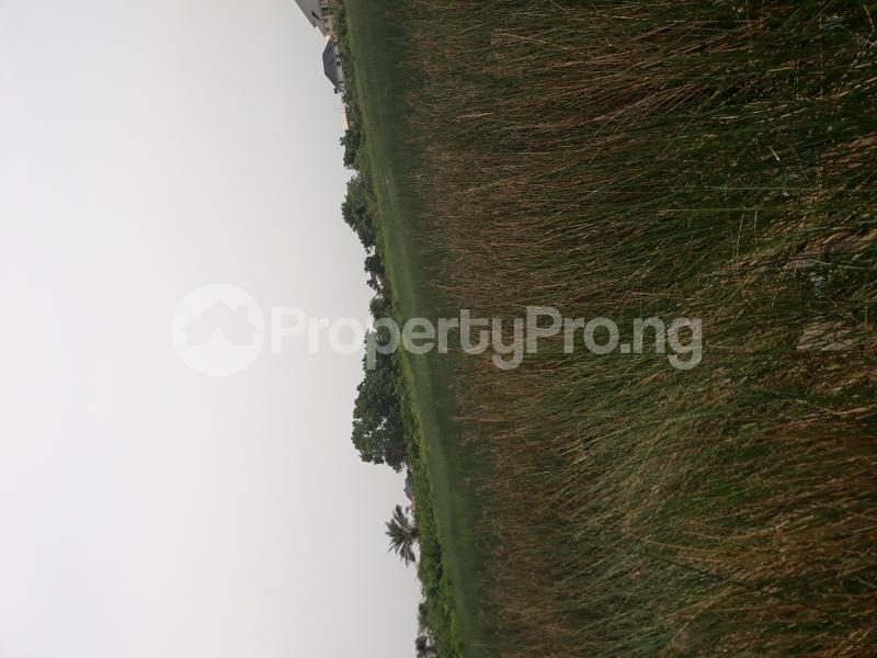 Residential Land Land for sale Located At Satellite Town FESTAC Amowu Odofin Lagos Mainland Lagos Nigeria  Satellite Town Amuwo Odofin Lagos - 28