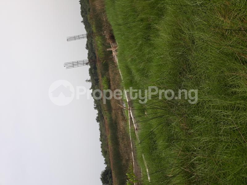 Residential Land Land for sale Located At Satellite Town FESTAC Amowu Odofin Lagos Mainland Lagos Nigeria  Satellite Town Amuwo Odofin Lagos - 17