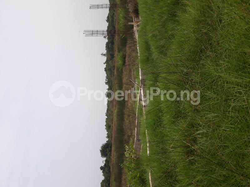 Residential Land Land for sale Located At Satellite Town FESTAC Amowu Odofin Lagos Mainland Lagos Nigeria  Satellite Town Amuwo Odofin Lagos - 25