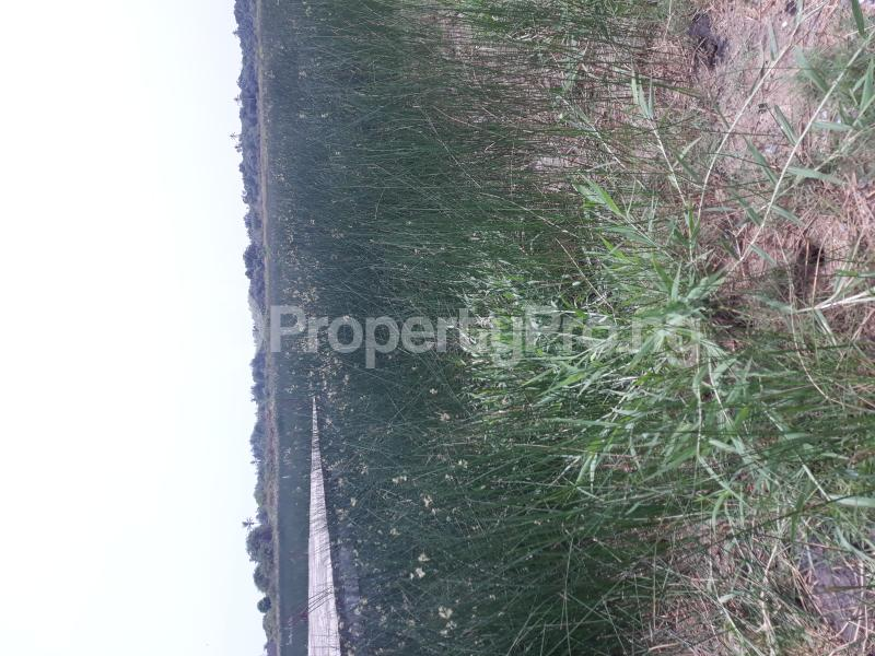 Residential Land Land for sale Located At Satellite Town FESTAC Amowu Odofin Lagos Mainland Lagos Nigeria  Satellite Town Amuwo Odofin Lagos - 47