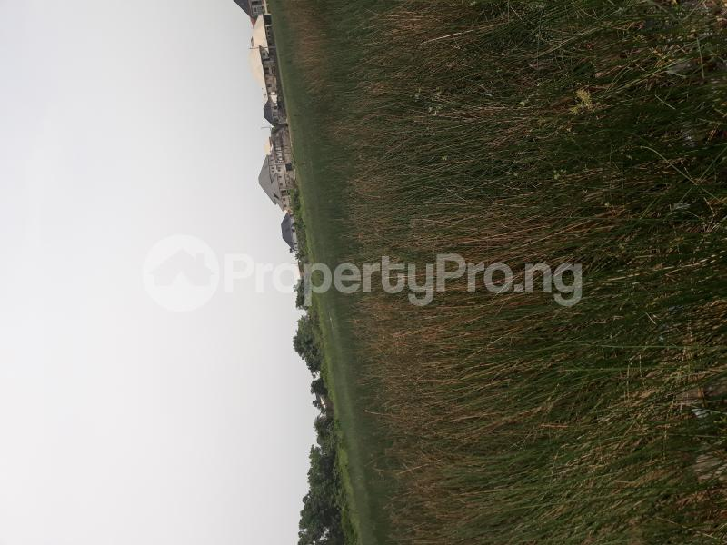 Residential Land Land for sale Located At Satellite Town FESTAC Amowu Odofin Lagos Mainland Lagos Nigeria  Satellite Town Amuwo Odofin Lagos - 29