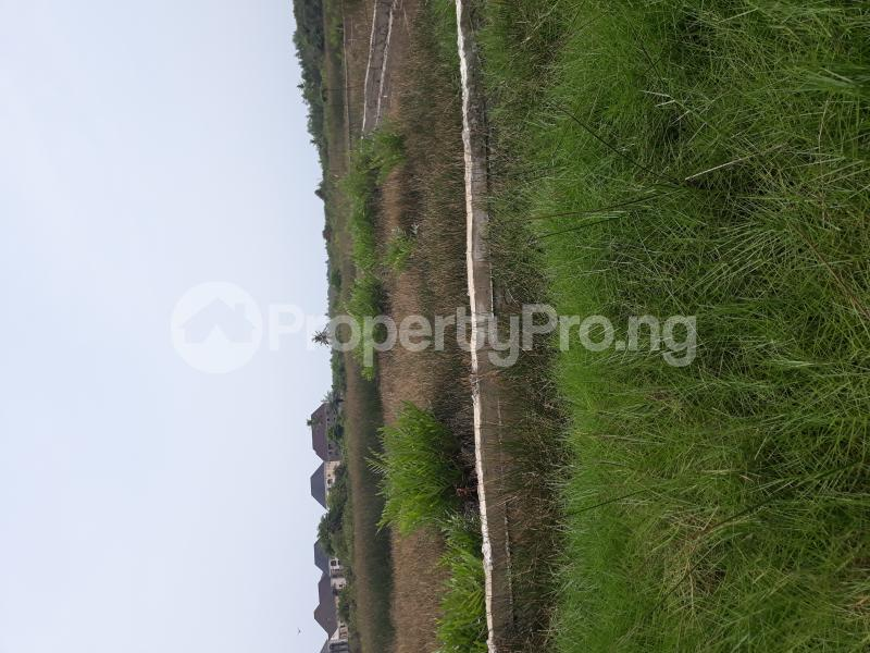 Residential Land Land for sale Located At Satellite Town FESTAC Amowu Odofin Lagos Mainland Lagos Nigeria  Satellite Town Amuwo Odofin Lagos - 13