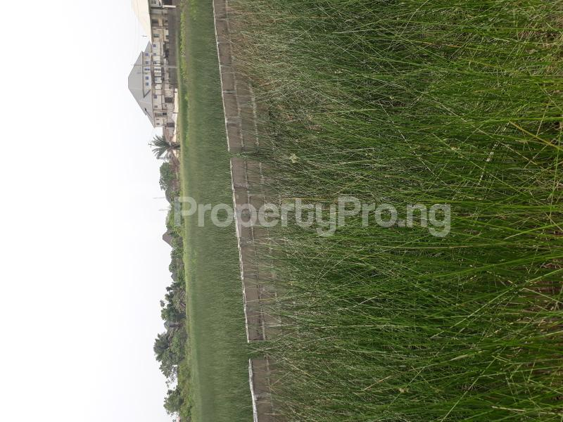 Residential Land Land for sale Located At Satellite Town FESTAC Amowu Odofin Lagos Mainland Lagos Nigeria  Satellite Town Amuwo Odofin Lagos - 49