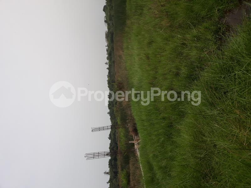 Residential Land Land for sale Located At Satellite Town FESTAC Amowu Odofin Lagos Mainland Lagos Nigeria  Satellite Town Amuwo Odofin Lagos - 22