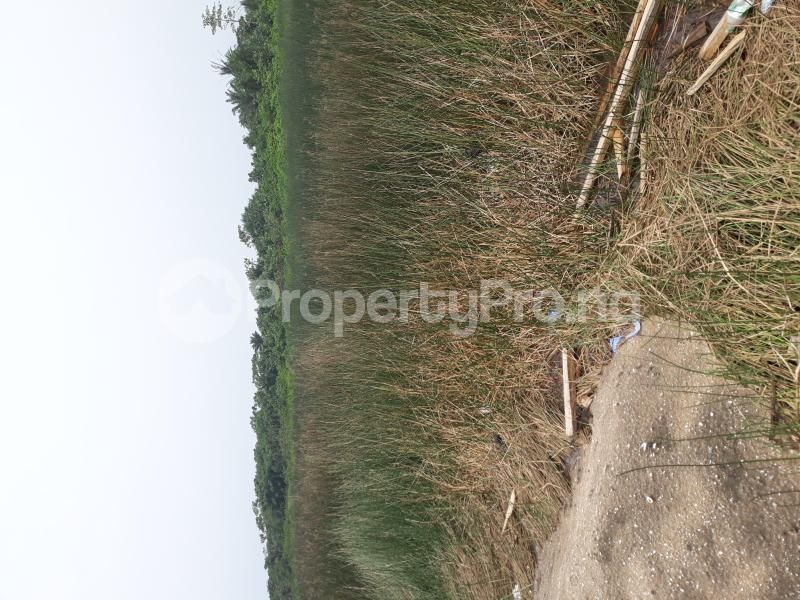 Residential Land Land for sale Located At Satellite Town FESTAC Amowu Odofin Lagos Mainland Lagos Nigeria  Satellite Town Amuwo Odofin Lagos - 48