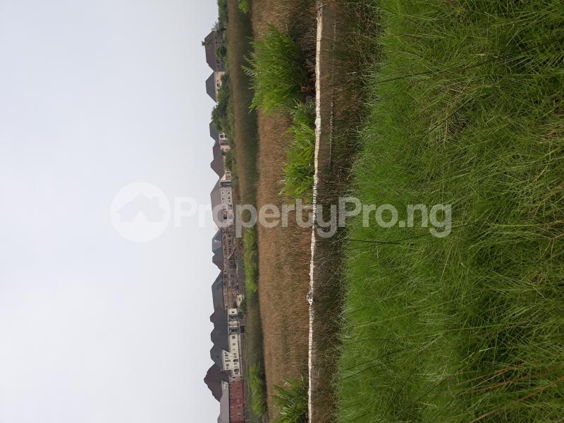 Residential Land Land for sale Located At Satellite Town FESTAC Amowu Odofin Lagos Mainland Lagos Nigeria  Satellite Town Amuwo Odofin Lagos - 12