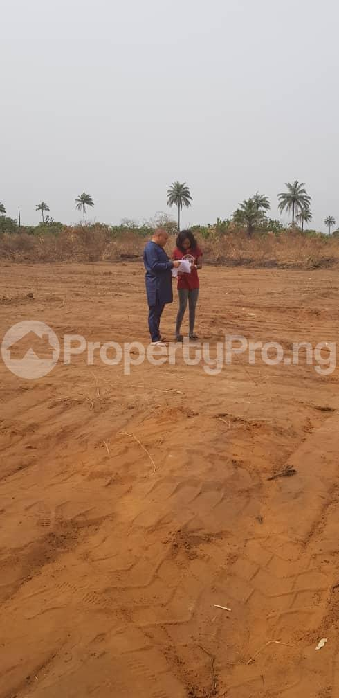 Serviced Residential Land Land for sale Diamond Estate Near the Michael Okapara University of Agric umudike Umuahia South Abia - 0