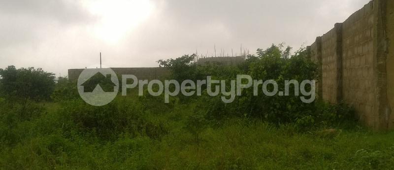 Residential Land Land for sale Close to Owerri West Local Govt Office Umuguma Owerri Imo - 0