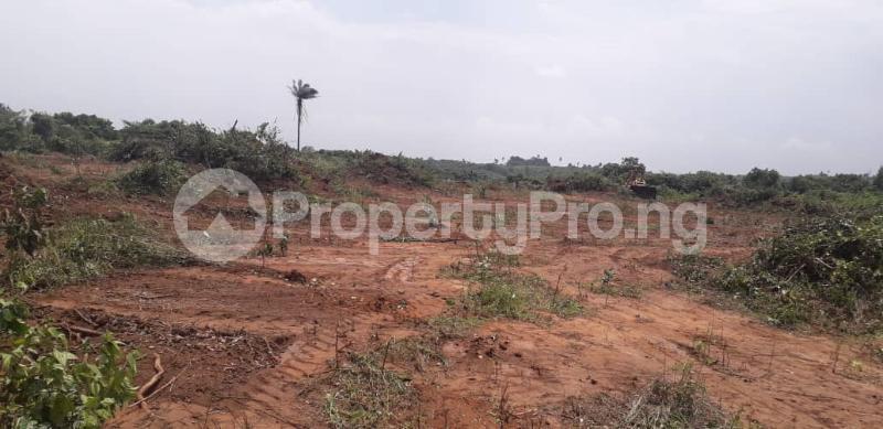 Serviced Residential Land Land for sale Lush City Ekpemiong Itak Off Ikot Ekpene Road  Ikono Akwa Ibom - 0